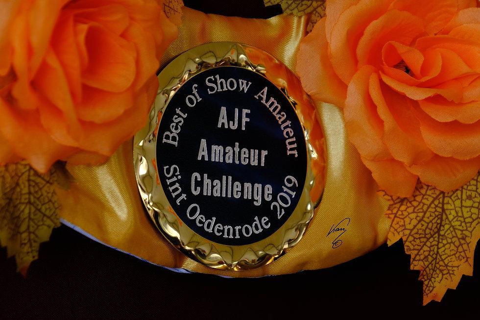 ahw - ajf - C wwwjankannl-2019-DSCF6822.