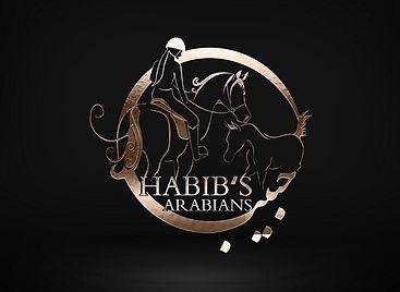 habibs.JPG