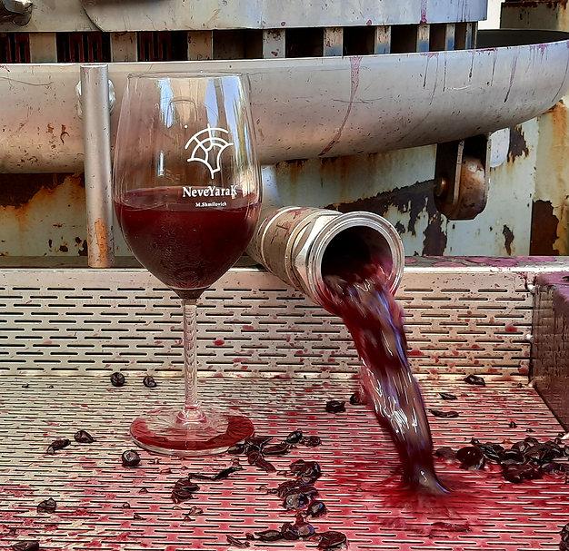 טעימות יין בסופש