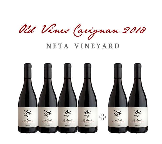 4+2 Carignan Neta