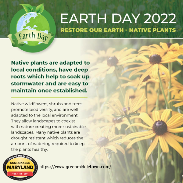 2022-Earth-Day-600x600-Pixels.png