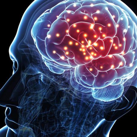 Que se passe-t-il dans notre cerveau lors d'une séance EFT?
