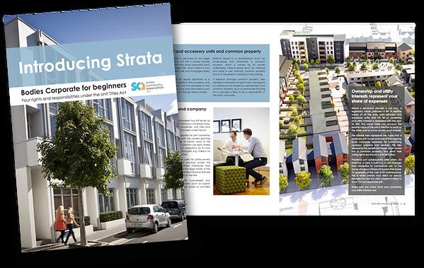 strata-ebook.png