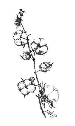 SLIM PICKINS - orig cotton stem framed pen ink