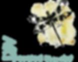"Impasto Original Paintings and drawings by Hattiesburg Mississippi Artist Amanda Spiers Sanford. Wall Art. Mississippi Cotton Boll ""Slim Pickins"" drawings, Arkansas, Birds, Dragonflies, Impasto, Texture, Original, Poppies, magnolias"