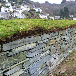 grass topped drystone wall