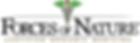 FON_logo_organic.png