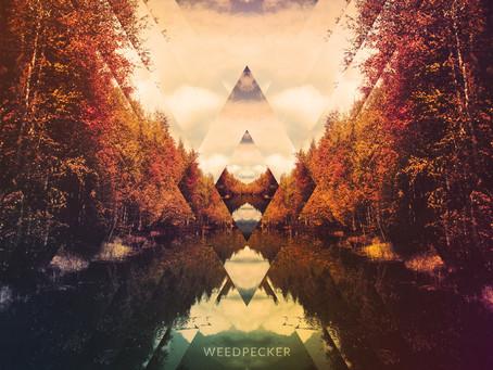 WEEDPECKER – III (2018, Stickman Records)