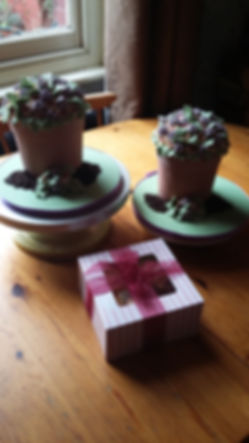 Mother's Day Flower Pots Cake's