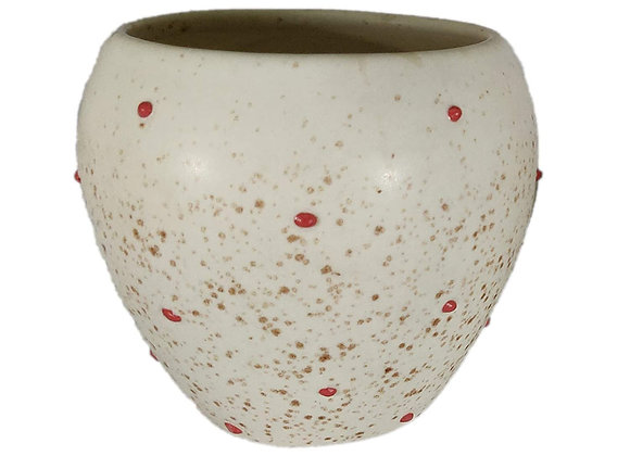UrbanRoots Small Apple Ceramic Pot (Polka Dots)