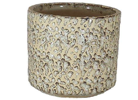 UrbanRoots Cylindrical Pot (5 inch)