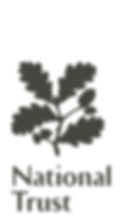 Logo insert grey.jpg