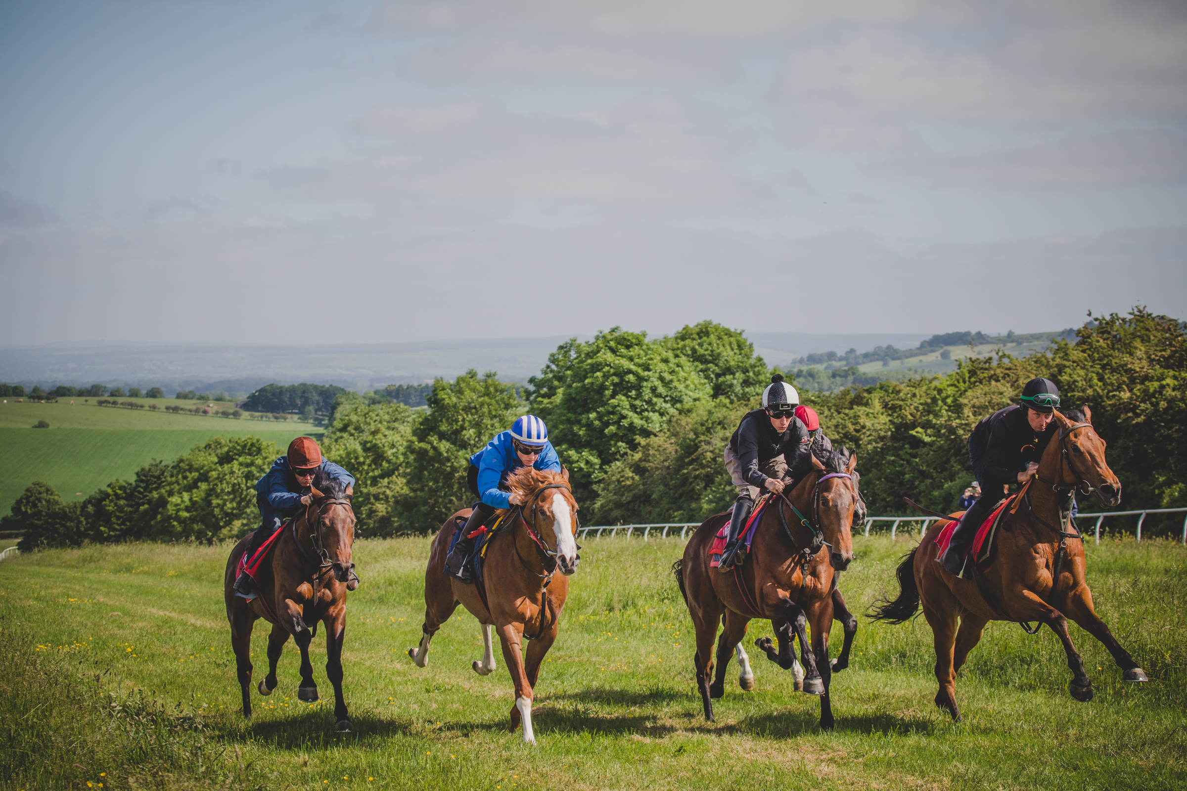 At the gallops