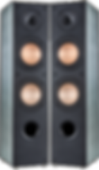 FS110PNG.png