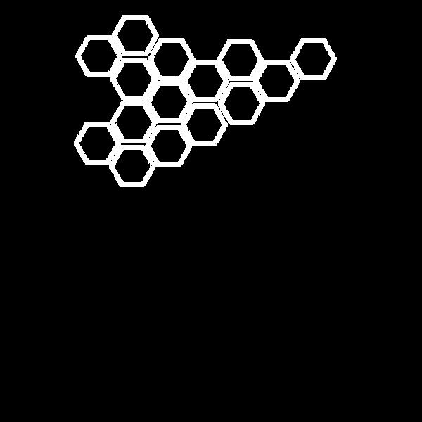 honeycomb print.png