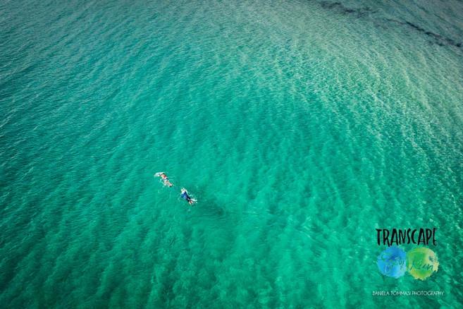Aerial Swim