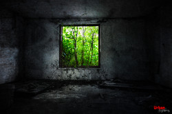 The Green Frame