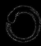 Hakushi logo final v1.png