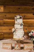 Shea-Carlo-wedding-alishalightphotograph