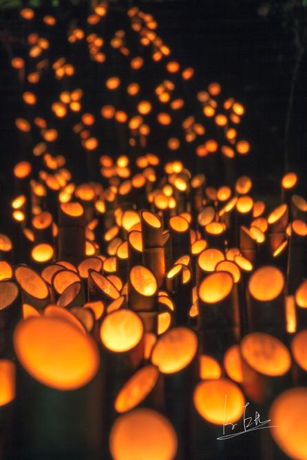 Usuki Takeyoi Lantern Festival, Usuki city, Oita/大分県臼杵市うすき竹宵