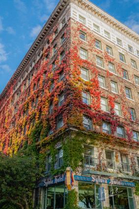 Sylvia Hotel in Autumn, Vancouver