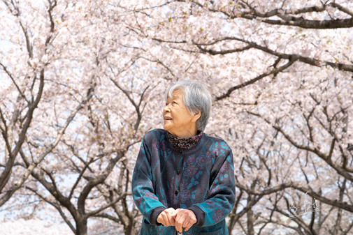 Another shot of my grandma!  祖母の写真をもう一枚。   Lens: Canon EF 85mm f/1.4L IS USM