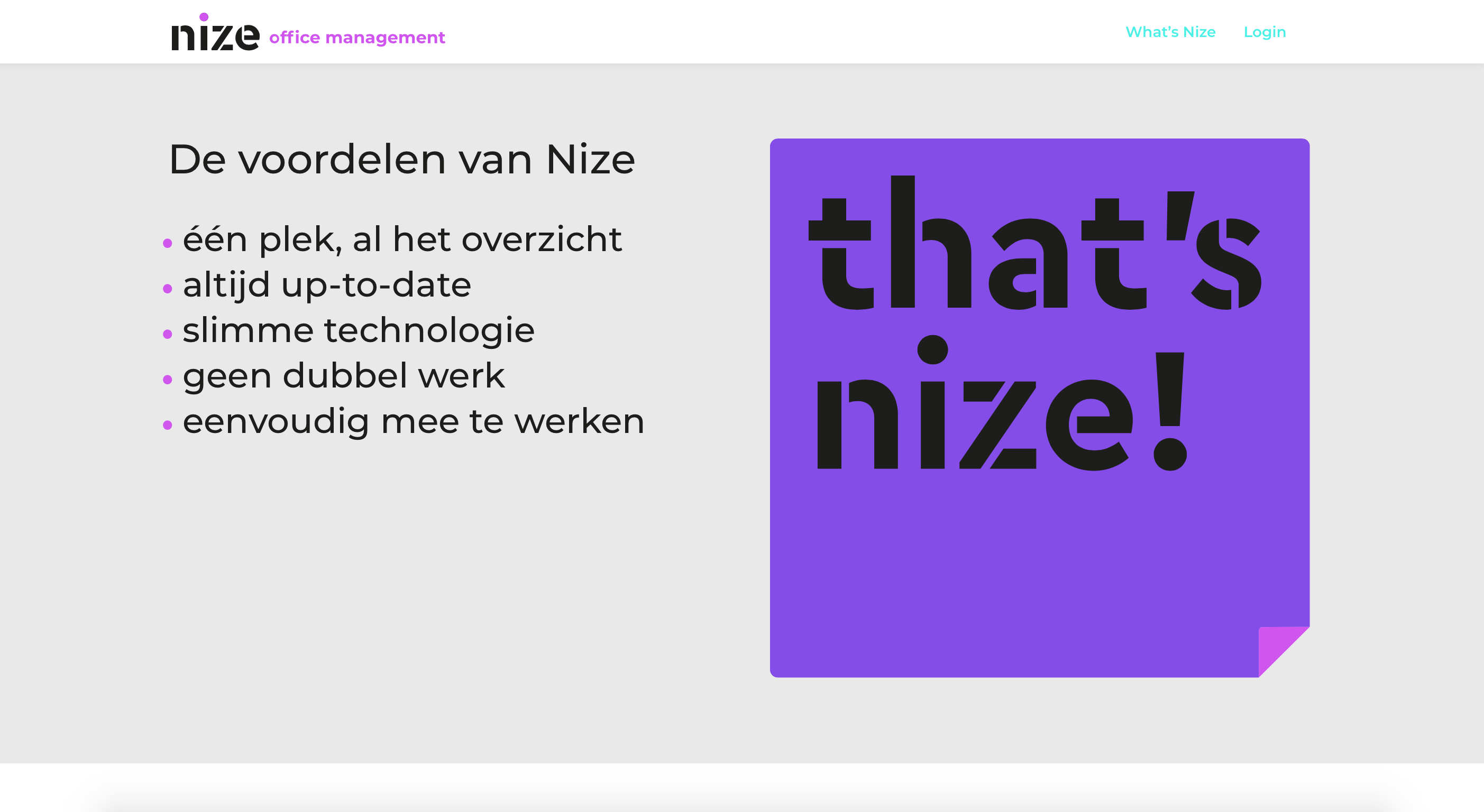 nize today website copy 3