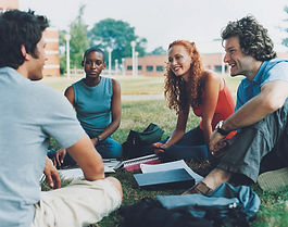 Study Group on the Grass
