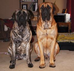 Boone & Brinkley