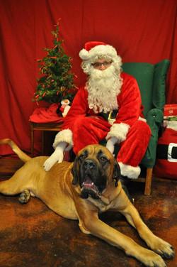 Boone Christmas 2012