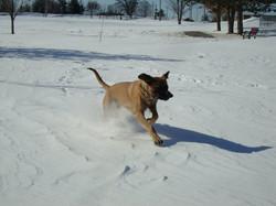 Boone Winter 2011