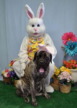 Brinkley Easter 2012