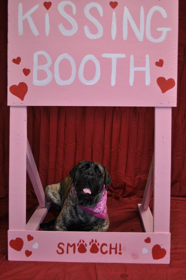 Brinkley Valentine 2012