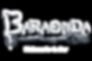 logo_300_white.png