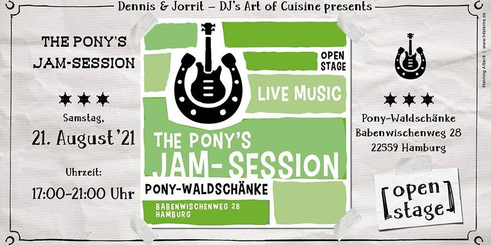#3 The Pony's Jam Session