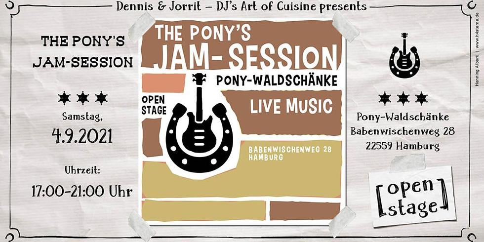 #4 The Pony's Jam Session