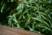 Les haricots verts frais