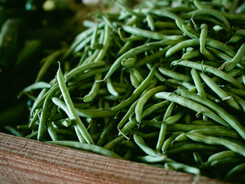 Frische grüne Bohnen
