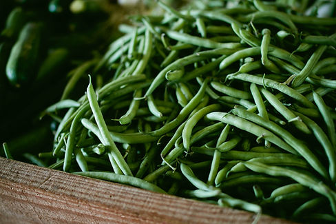 Feijões verdes frescos