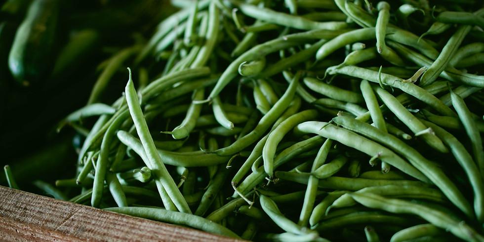 Freezing Green Beans Workshop