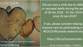 Cocoon Pregnancy Loss Study - Recruitment