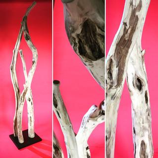 Holzskulptur + Lampe // ROBINIA wood sculptr