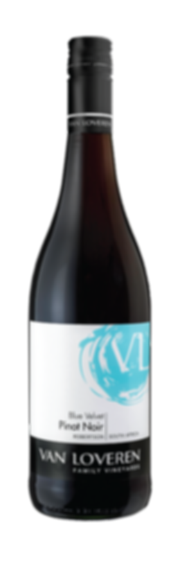Van Loveren Blue Velvet Pinot Noir