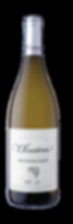 Christina - Wine Small_Sauvignon Blanc.png