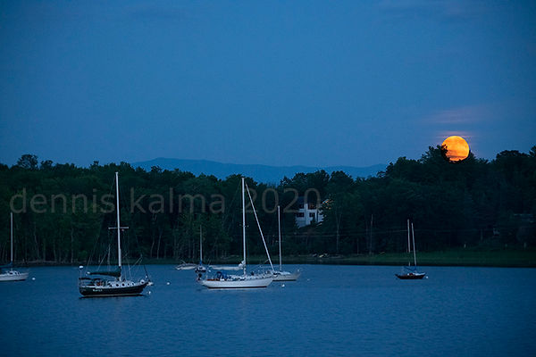 L moon charlotte 0835+0836 980x653.jpg