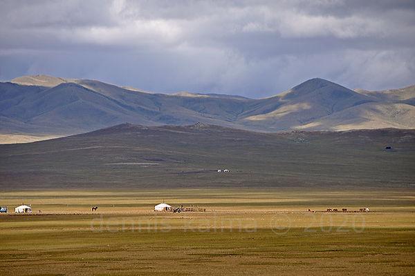 T steppe 3316 980x653.jpg