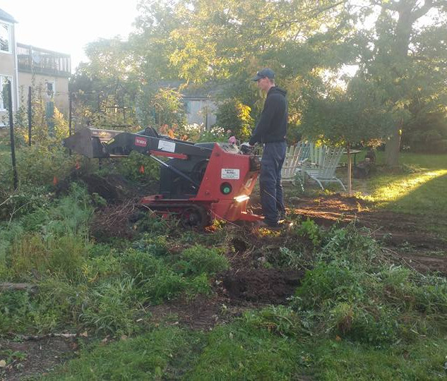 Garden Recreation (Before)