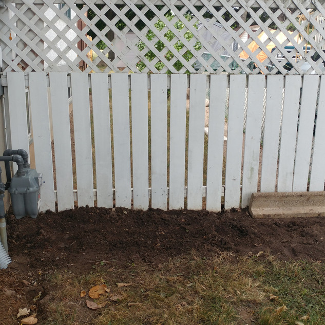 Shrub Removal (After)