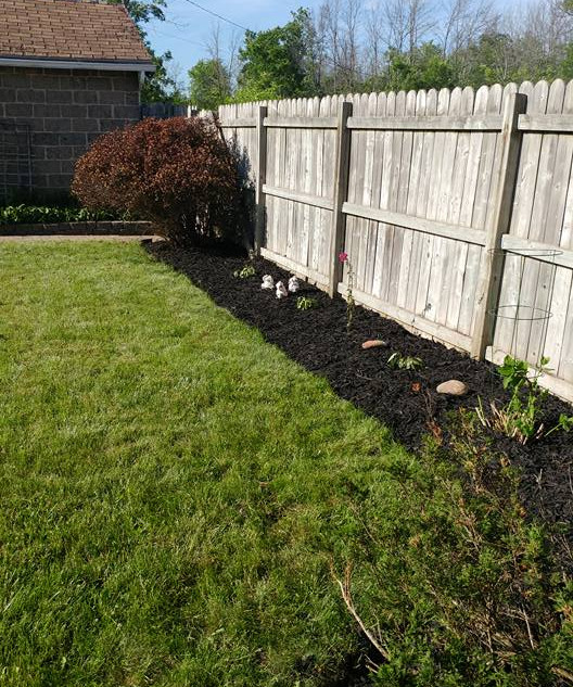 Garden Clean-out (After)