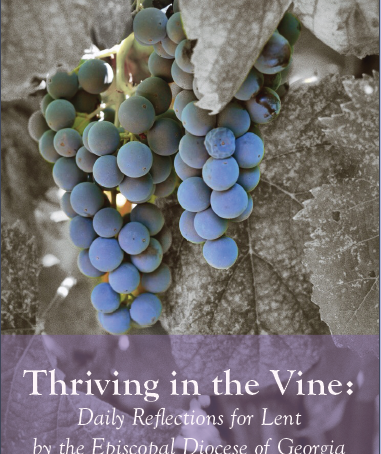 Thriving in the Vine: Lent 2021 Devotional Book